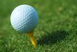 Golf Tee 2